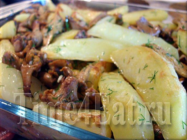 баклажаны в сметанном соусе рецепты приготовления